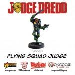 rp_jd20027-flying-squad-judge.jpeg