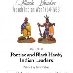rp_wg7-fiw-36-pontiac-blackhawk-a.jpeg