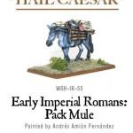 rp_wgh-ir-55-pack-mule-c.jpeg