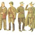 WWII Polish Uniform Guide