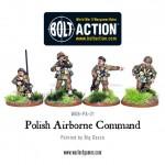 rp_wgb-pa-21-polishab-command.jpeg