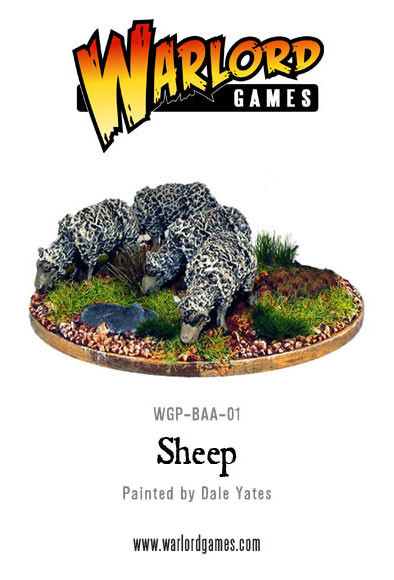rp_wgp-baa-01-sheep-b_1.jpeg