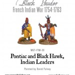 WG7-FIW-36-Pontiac-Blackhawk-a