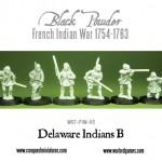 WG7-FIW-50-Delaware-Indians-B