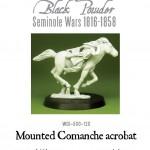 WGI-500-120-Comanche-acrobat