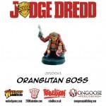 JD20043-Orangutan-Boss