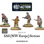 WGB-BI-144-SAS-Sections-c