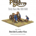 WGP-TYW-35-Swedish-Leather-Gun-d