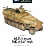 WGB-WM-113-SdKfz251+10-a