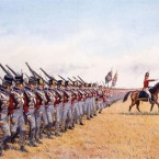 History: Napoleonic Wars Army Structure