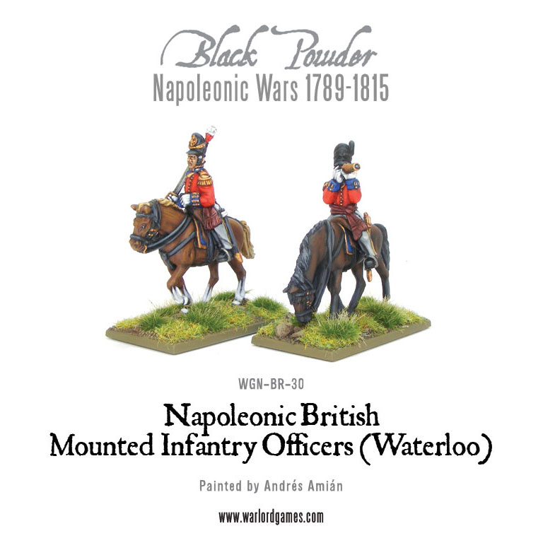 WGN-BR-30-Mounted-Waterloo-Officers-a