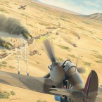 New: Bolt Action Warplanes