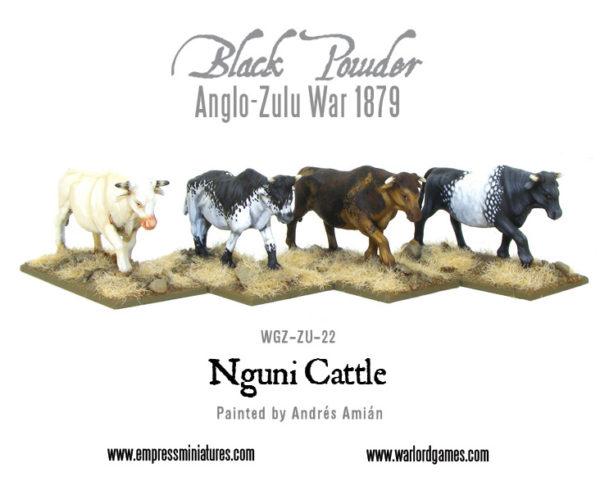 WGZ-ZU-22-Nguni-cattle-a