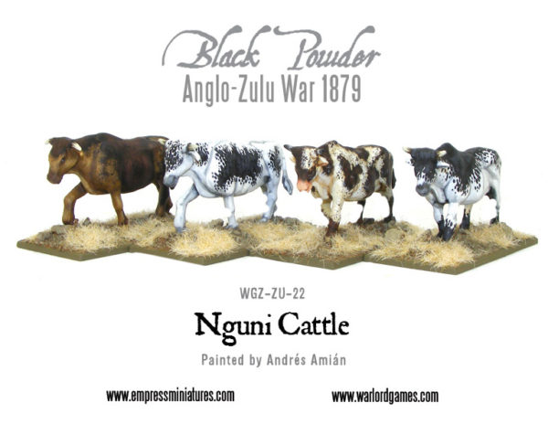 WGZ-ZU-22-Nguni-cattle-b