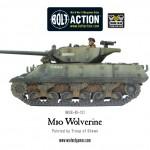 WGB-BI-131-M10-Wolverine-f