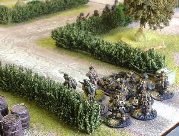Commandos among hedgerows