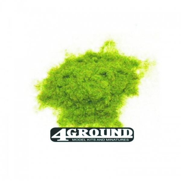 Spring Static Grass