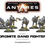 WGA-BOR-02-Gang-Fighters-b1