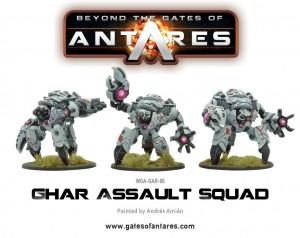 WGA-GAR-06-Ghar-Assault-Squad-b