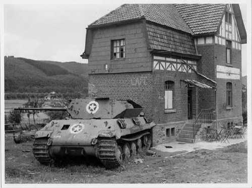 Panther (M10) BandW c