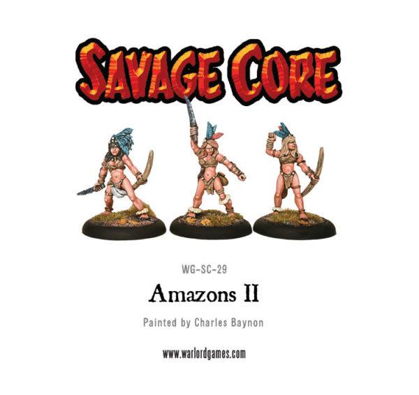 WG-SC-29-Amazons-II
