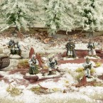 New: German Grenadiers in Winter Clothing