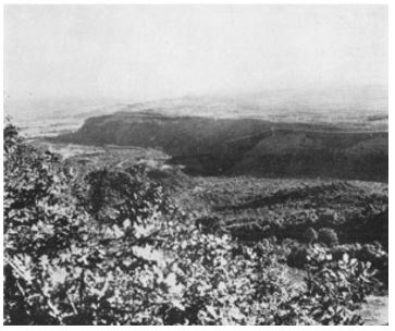 looking North-East to Katerini from 28 Maori Batt position in Olympus pass 1941
