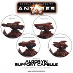 WGA-ALG-20-Algoryn-Support-Capsule-c