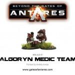WGA-ALG-37 Algoryn Medic team