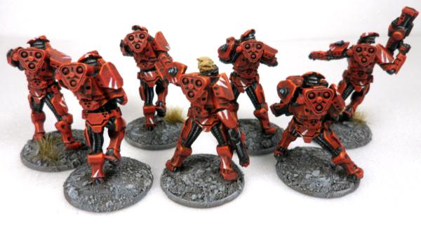 Carneiro Algoryn Squad2
