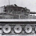 tiger-131