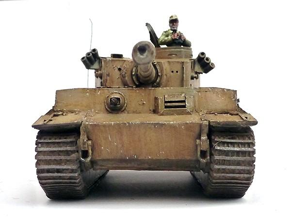 andy-singleton-tiger-5