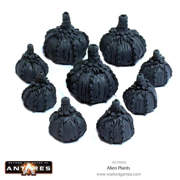 505100002 Alien Plants A