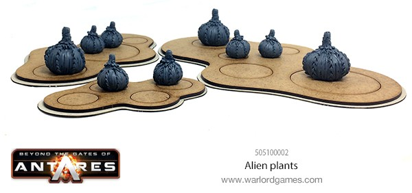 505100002 Alien Plants C