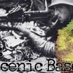 Hobby: How to do Jungle Basing
