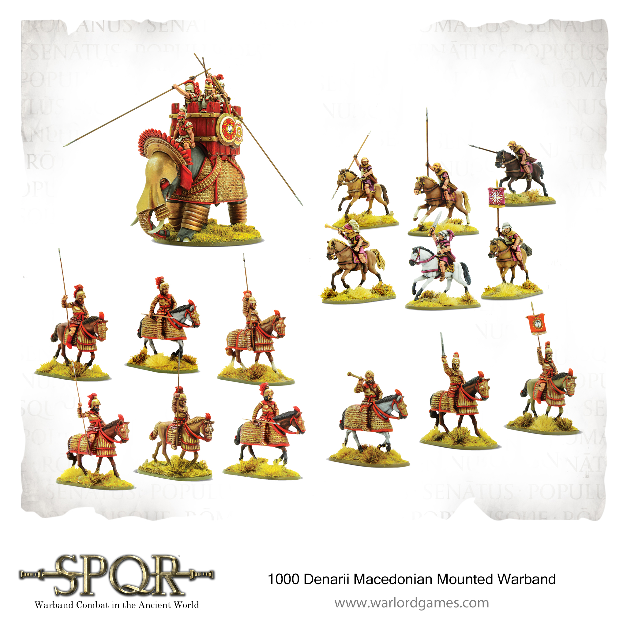 1000 Denarii Macedonian Mounted Warband