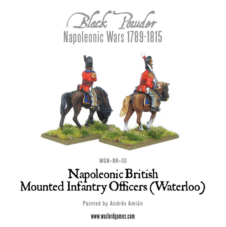 WGN-BR-30-Mounted-Waterloo-Officers-b