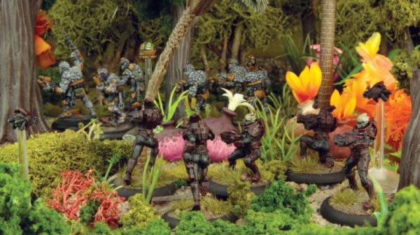 Jungle Boromites
