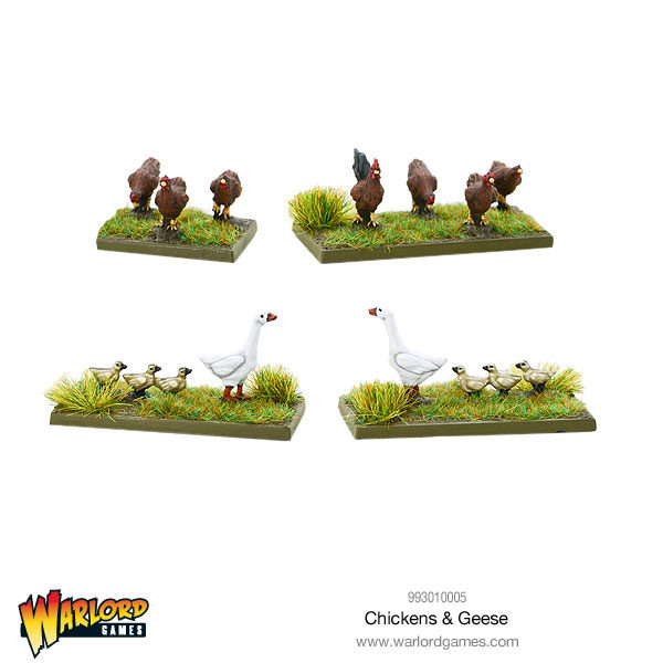 993010005-Chickens-&-Geese-01