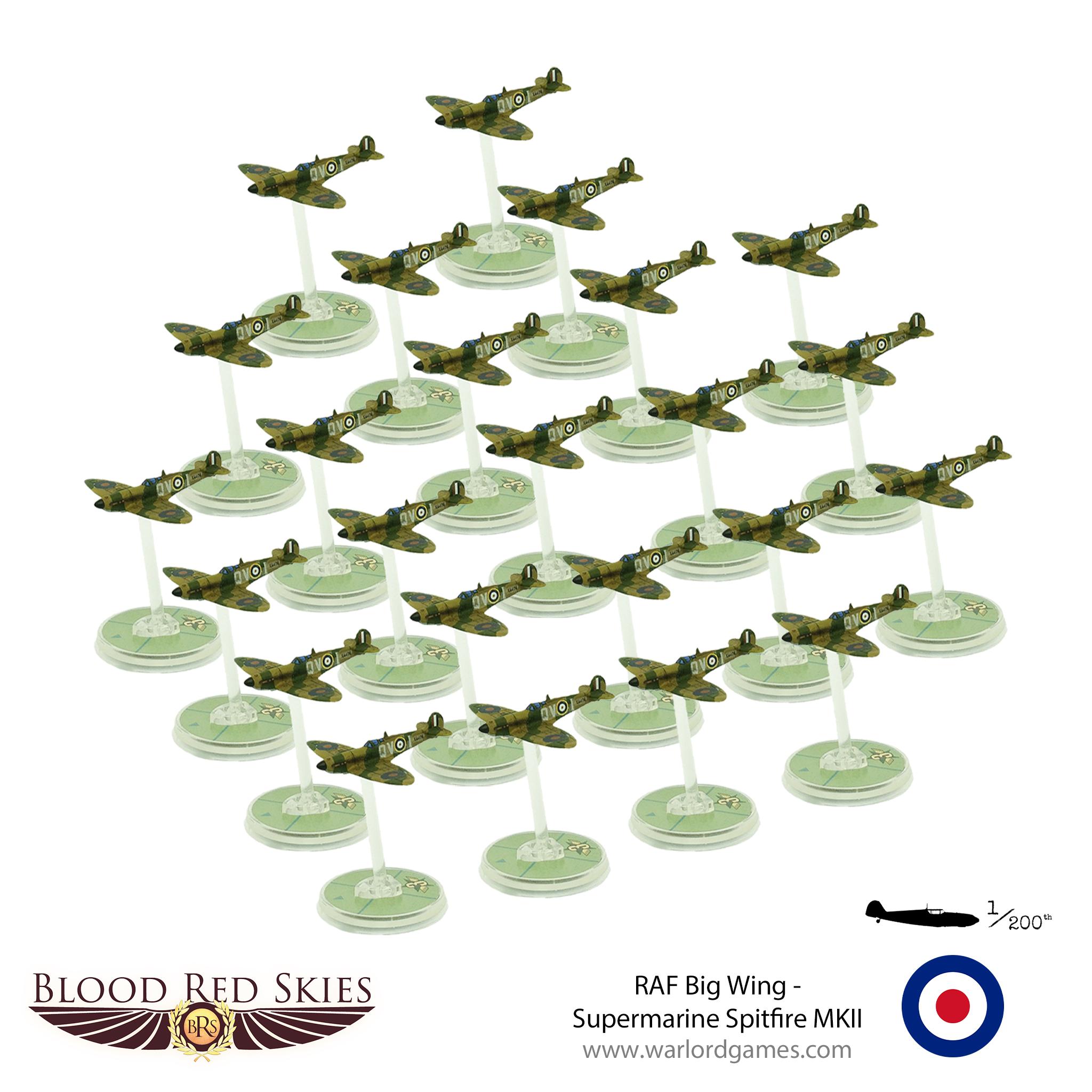 RAF Big Wing